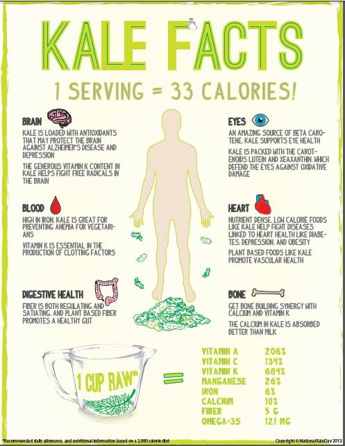 Kale-recipe-facts