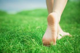 barefoot grass